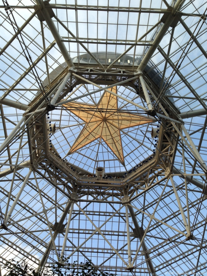 The Texas Lonestar gilds the glass ceiling of the Gaylord Texan's atrium.