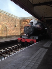The Hogwarts Express Coming into the Station