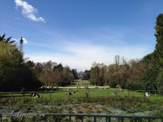 Just past the castle is Parco Sempione, a public green space in the heart of Milan. It was a warm, clear day, and lots of people were spread out on blankets enjoying the sunshine. We found a nice bench and did the same.
