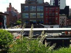 On NYC's The Highline